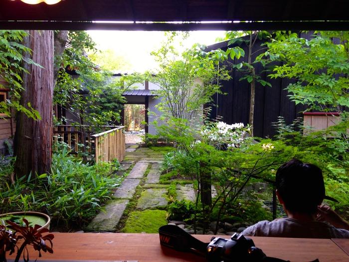 深い軒のある縁側から庭